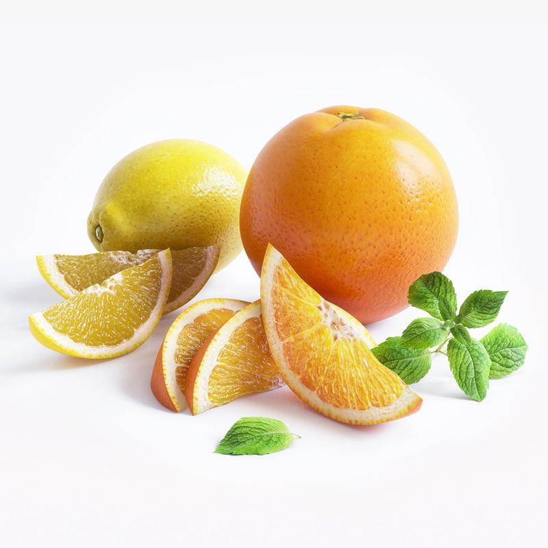 3d citrus fruit mint model