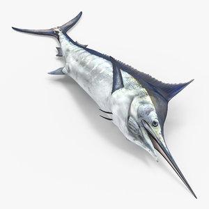 max blue marlin lying floor