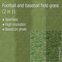 Football and baseball field grass (2 in 1)