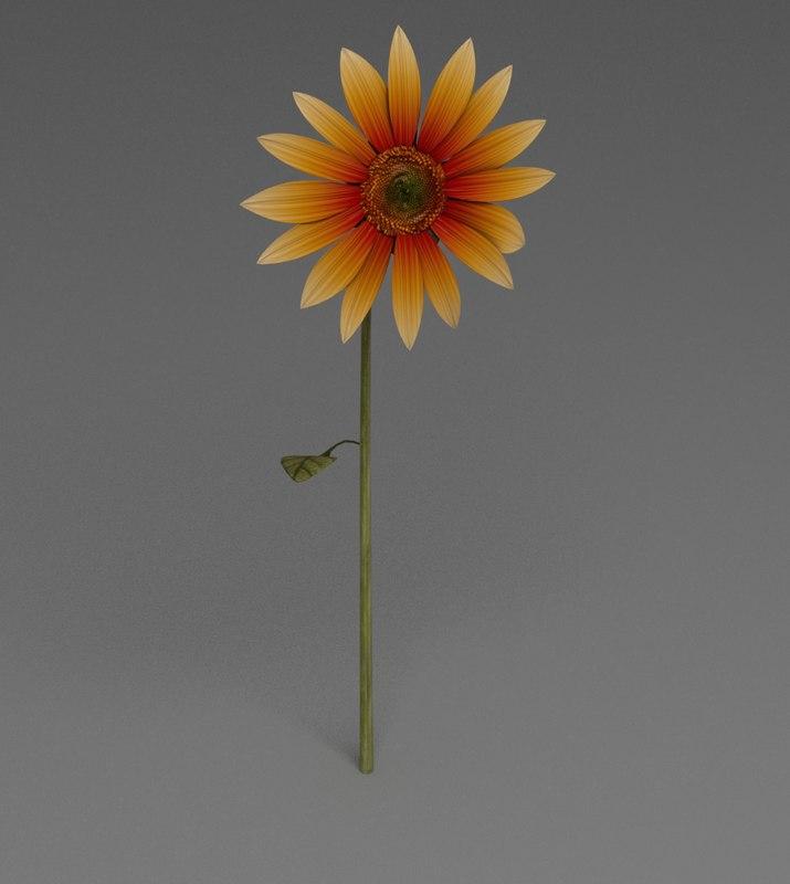 3ds sunflower nature