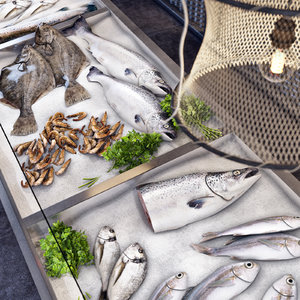 3d fish seafood showcase