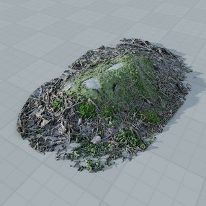 scan forest ground 3d model