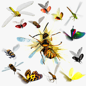 Animated flying insects. Dead insects. Splatters.