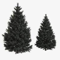 3d pine fir tree