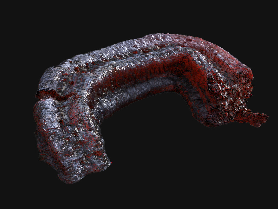 3d alien meat tentacle