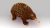 3d model australian spiny anteater