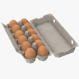 max egg container 01 open
