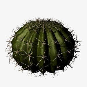 ball cactus obj