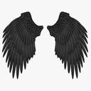 Wing 3D models