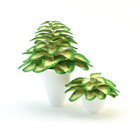 3d forest flowers plants model