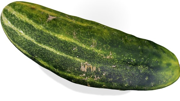 3ds cucumber realistic real