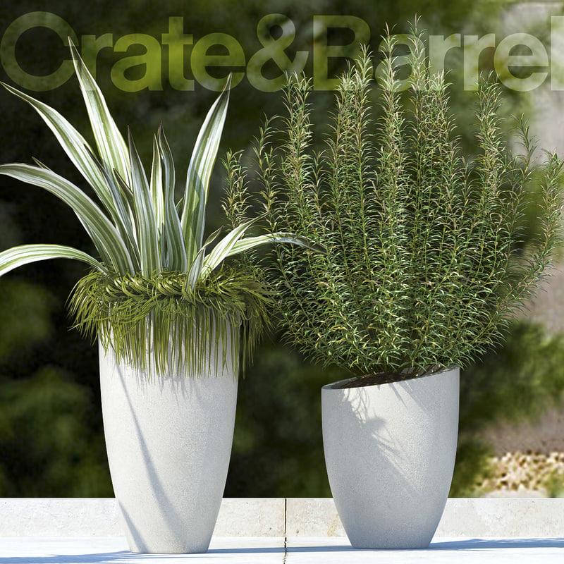 3d plants 65 model