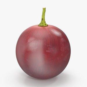 3d red grape model