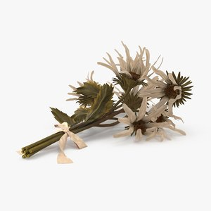 3d dead daisies bouquet laying model