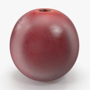 3d model red grape