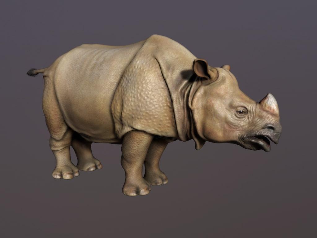indian rhinoceros obj