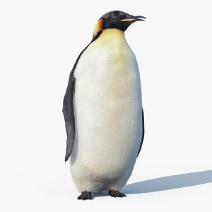 max emperor penguin fur rigged