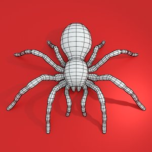 base mesh tarantula spider fbx