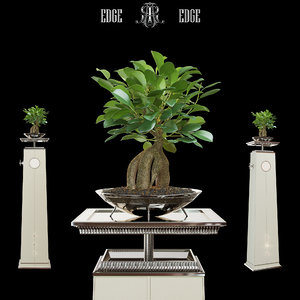 3d model flower stand art edge