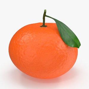 3d model tangerine leaf