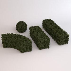 boxwood hedge 3d c4d