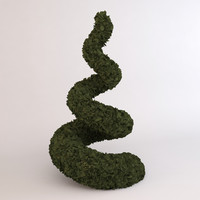 spiral hedge topiary max