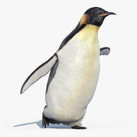 3d emperor penguin fur animation