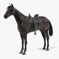 3d black horse