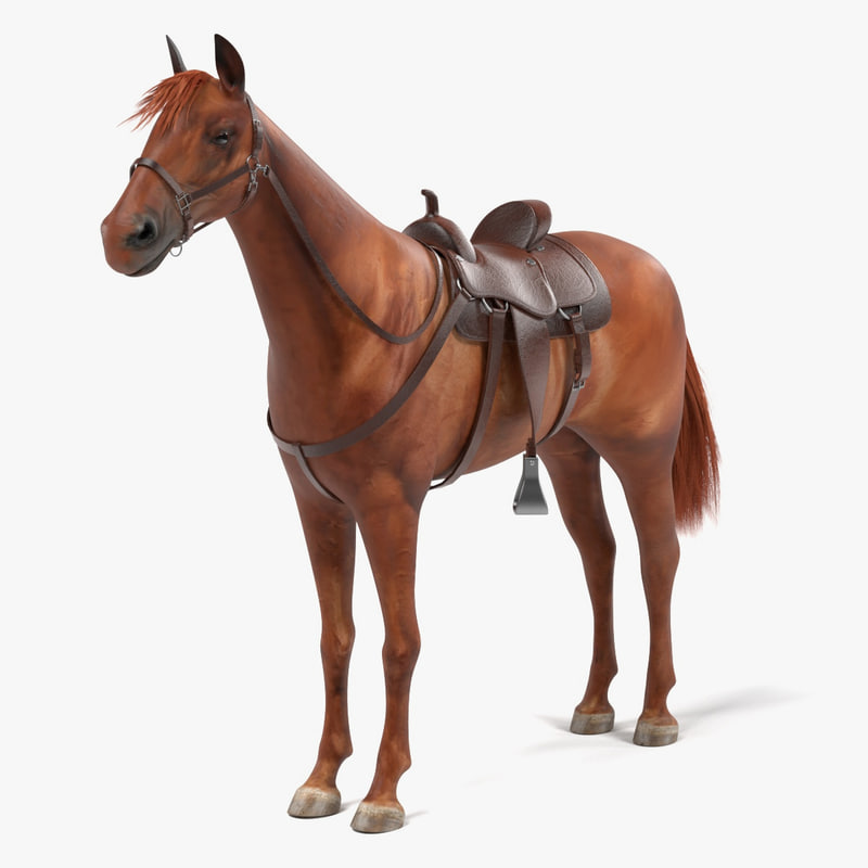 3d brown horse