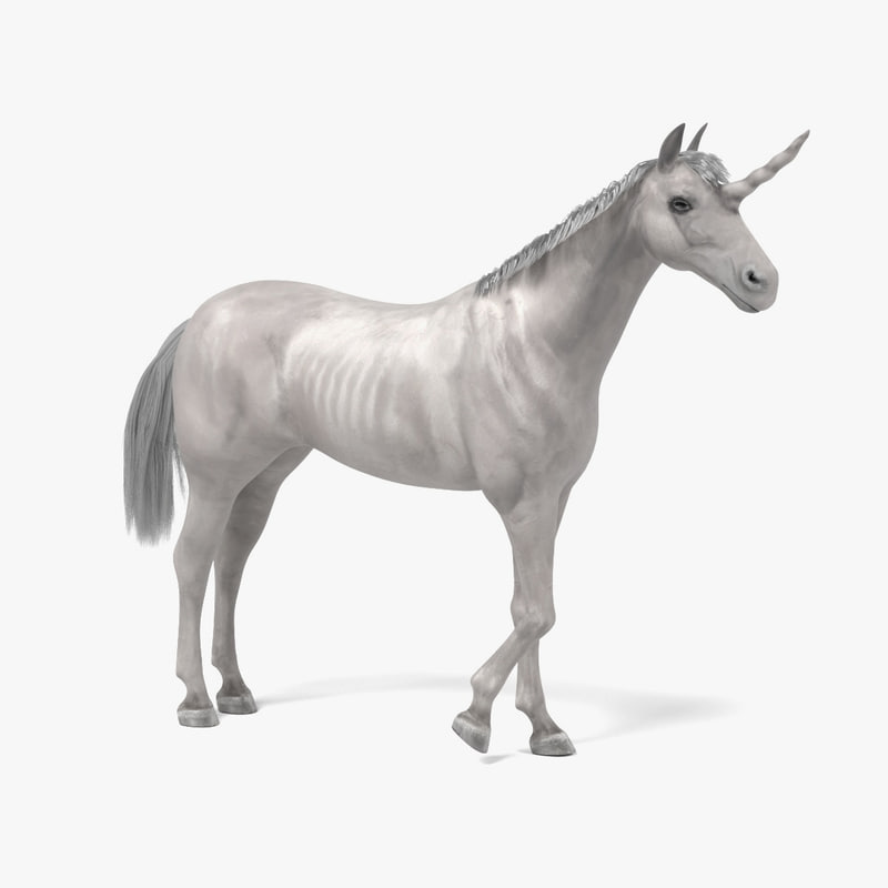 unicorn tail 3d model