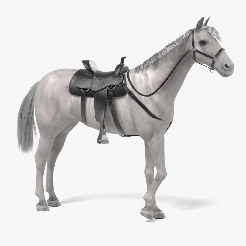 3d white horse