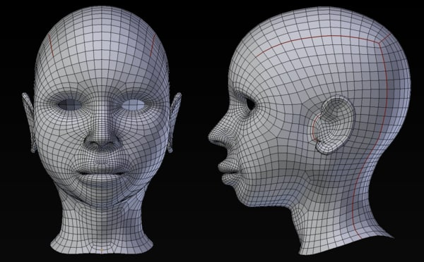 free obj model woman head base mesh