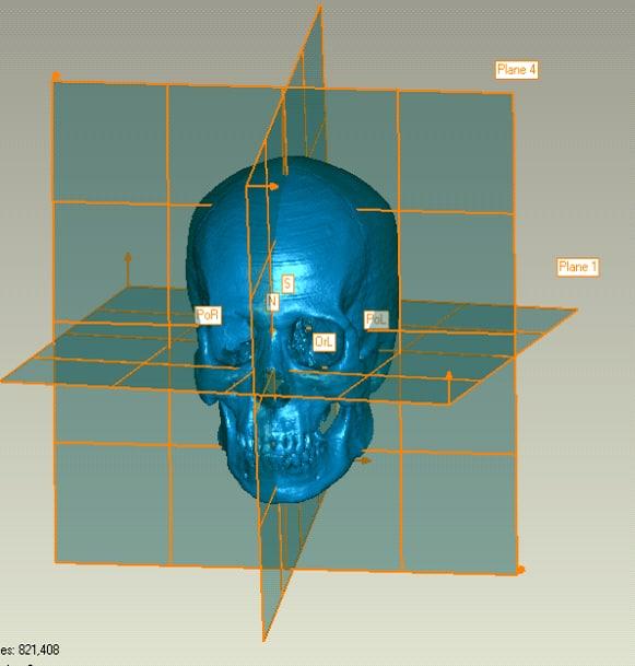 skull00 asian dry data 3d model
