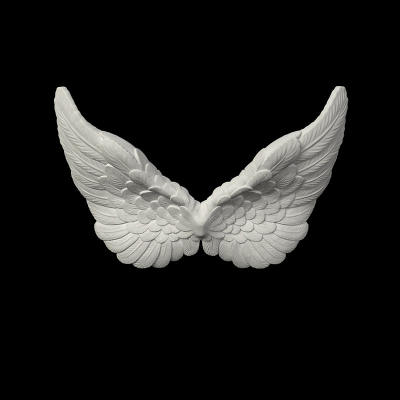 angel wings 3d model