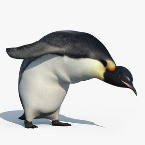 3d model of emperor penguin rigged