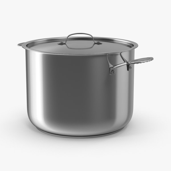 stainless steel max