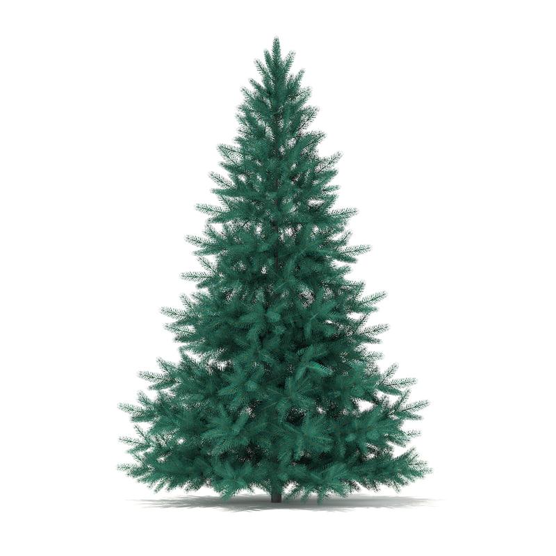c4d spruce picea pungens 2