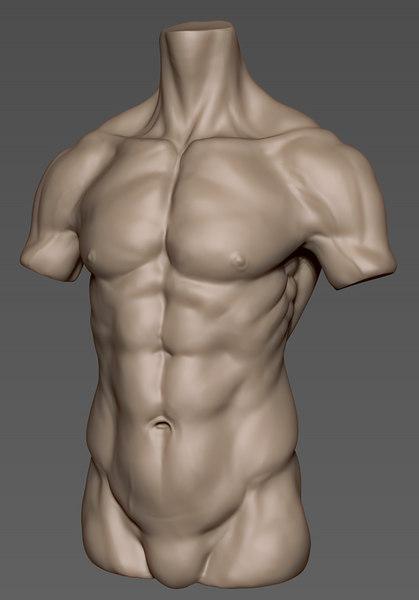 obj human male torso