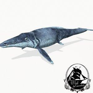 3ds basilosaurus marine