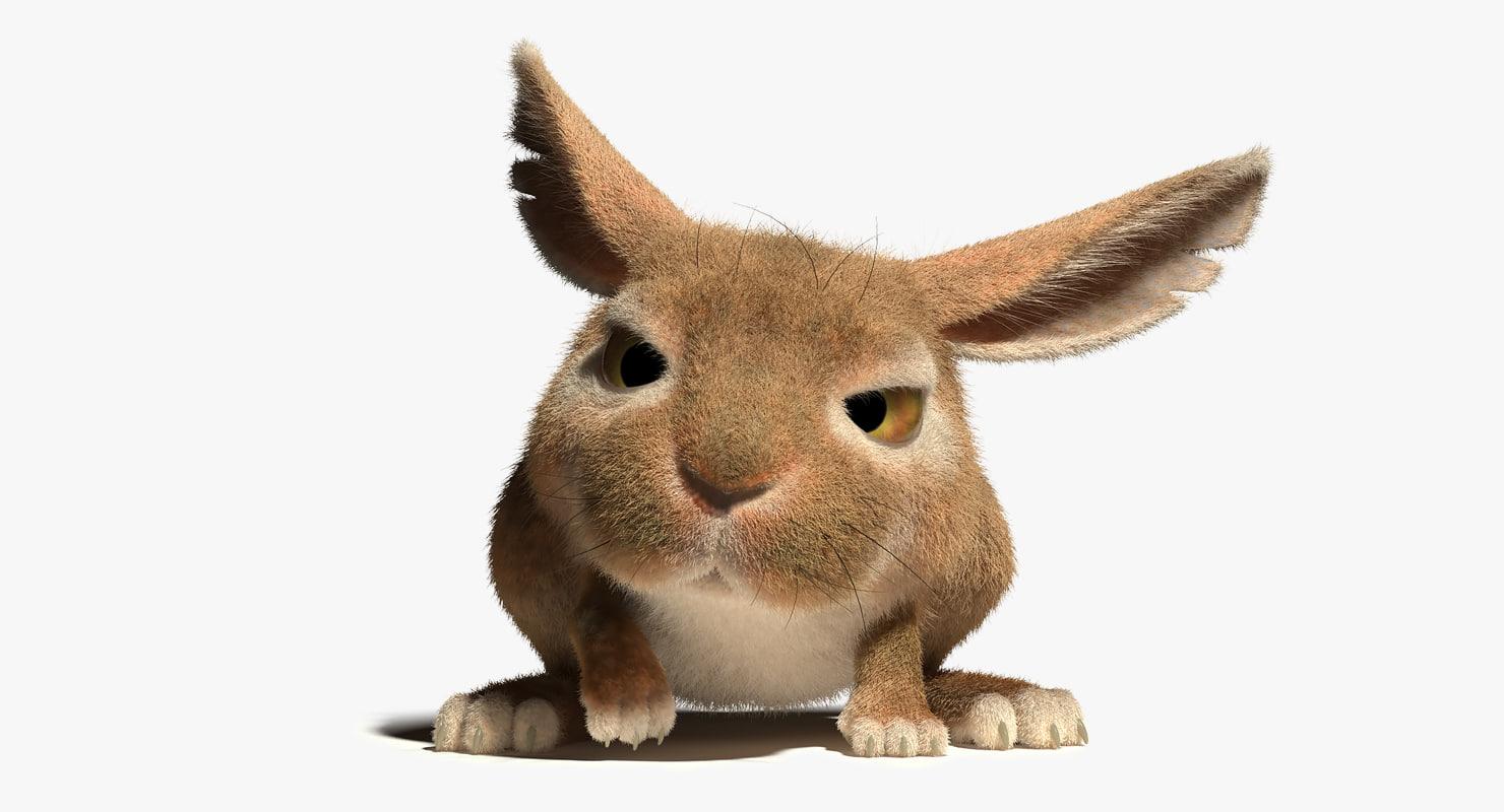 3d model of rabbit character rig