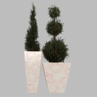 planter taper plant 3d obj