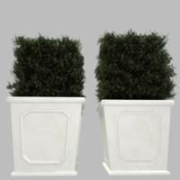 planter plant 3d model