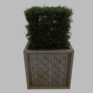 x planter plant