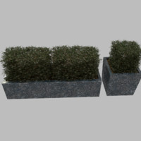 planter plant granite obj