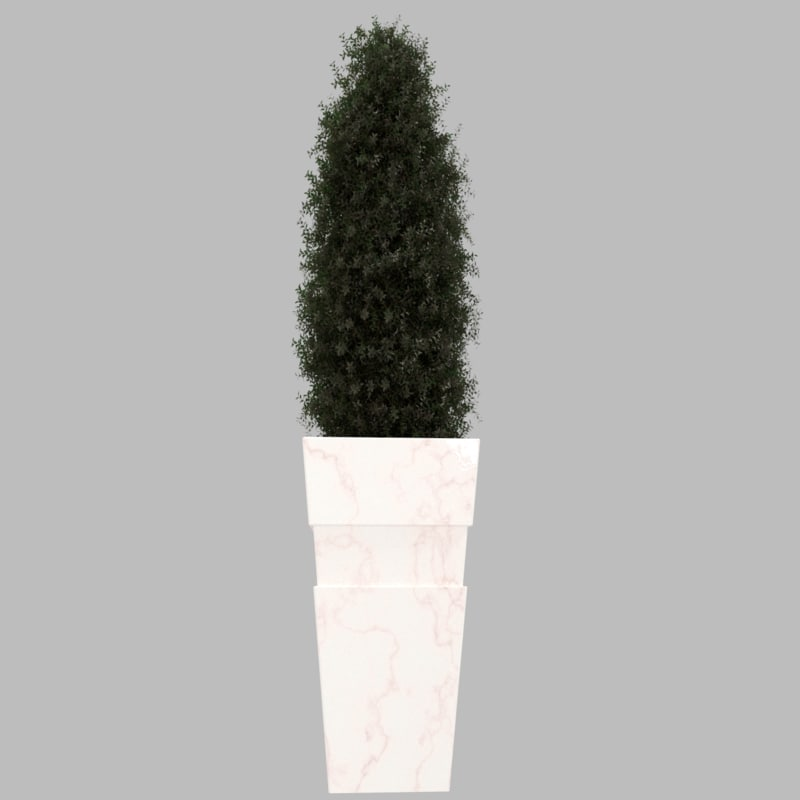 3d planter taper plant