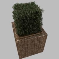 3d model planter plant