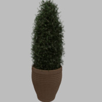 planter taper plant 3d model
