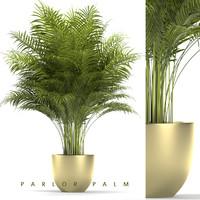 3d plant 67