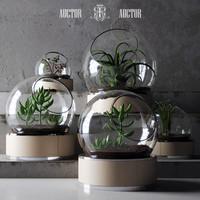 plant set ART Auctor