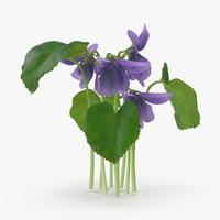 violet group 3d model